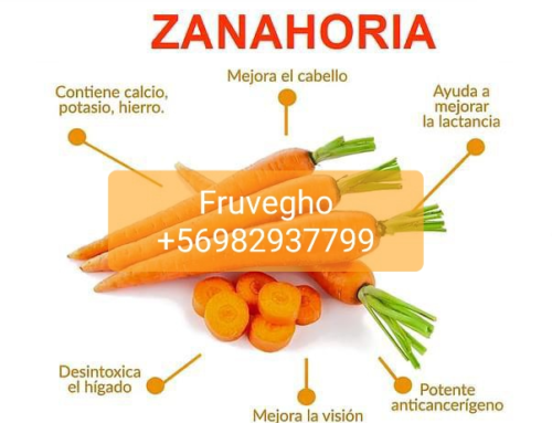 Rica Zanahoria!!!!